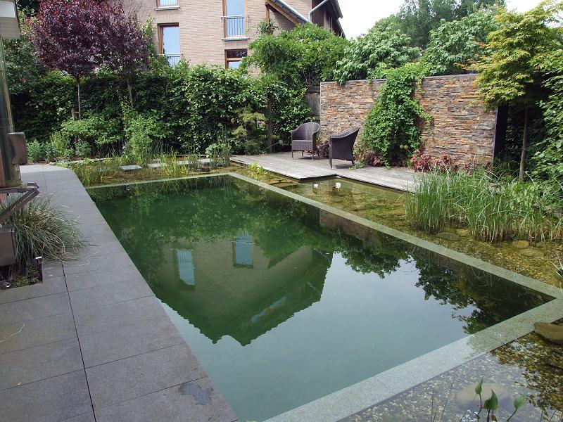 Realizzazione bio piscine monopoli bari piscine for Bio piscina